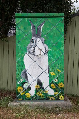 Signal Box - Rabbit