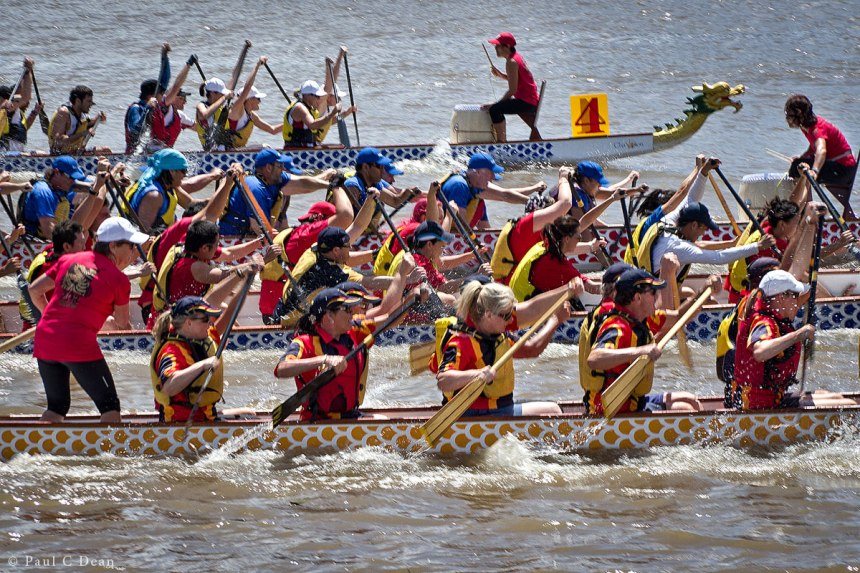 Dragon Boats 6