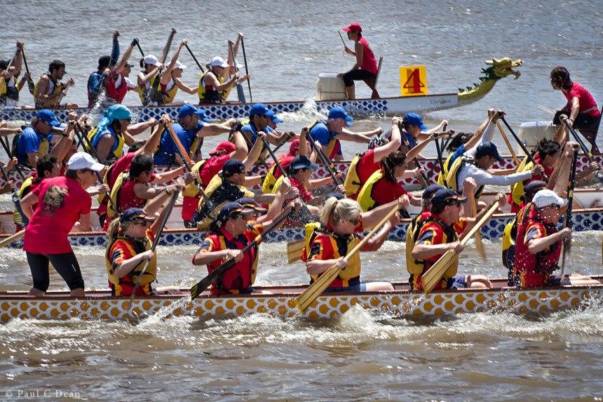 Dragon Boats 6